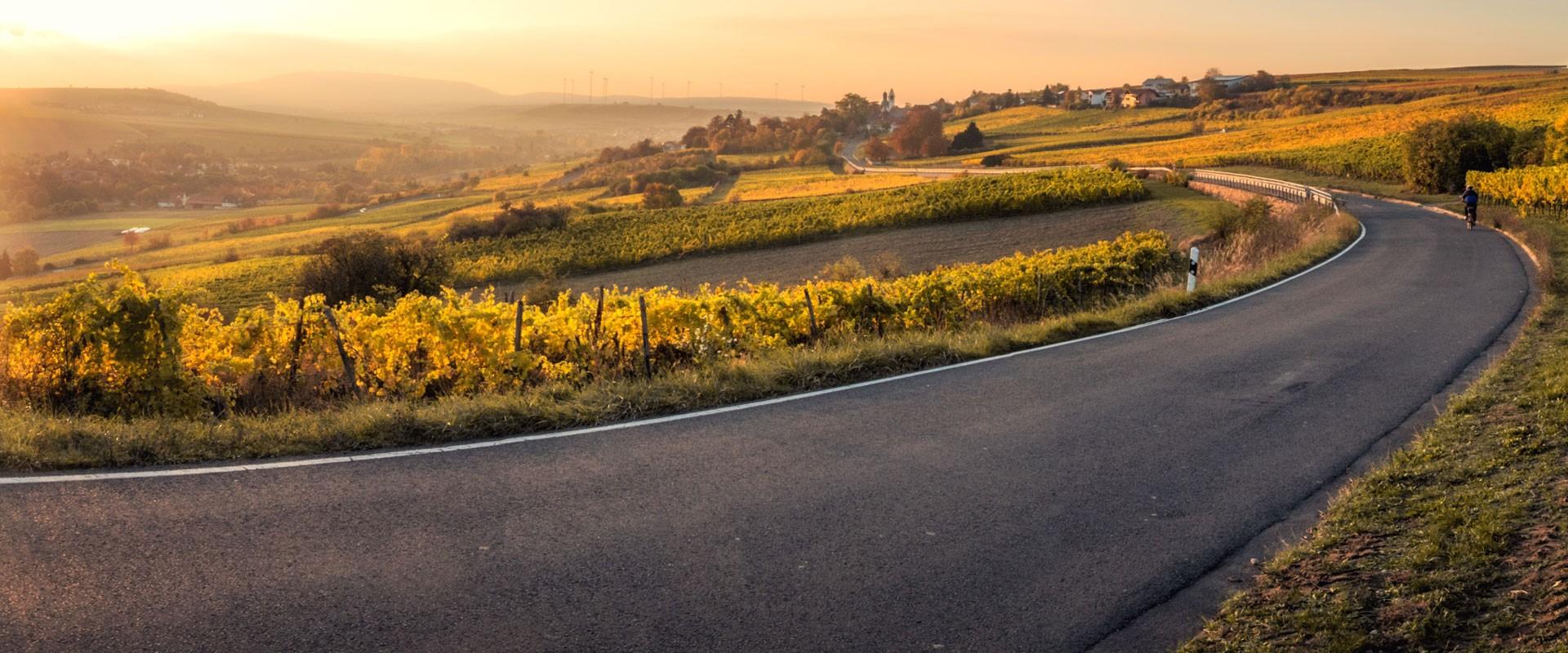 Retrouvez l'esprit de la route des vins